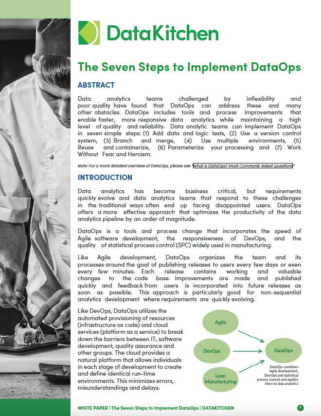 Thumbnail White Paper The Seven Steps to Implement DataOps